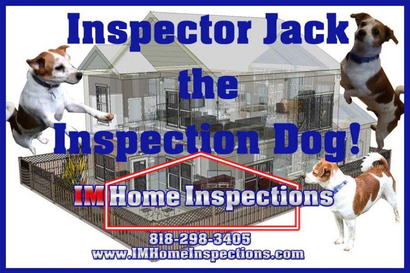 Inspector Jack