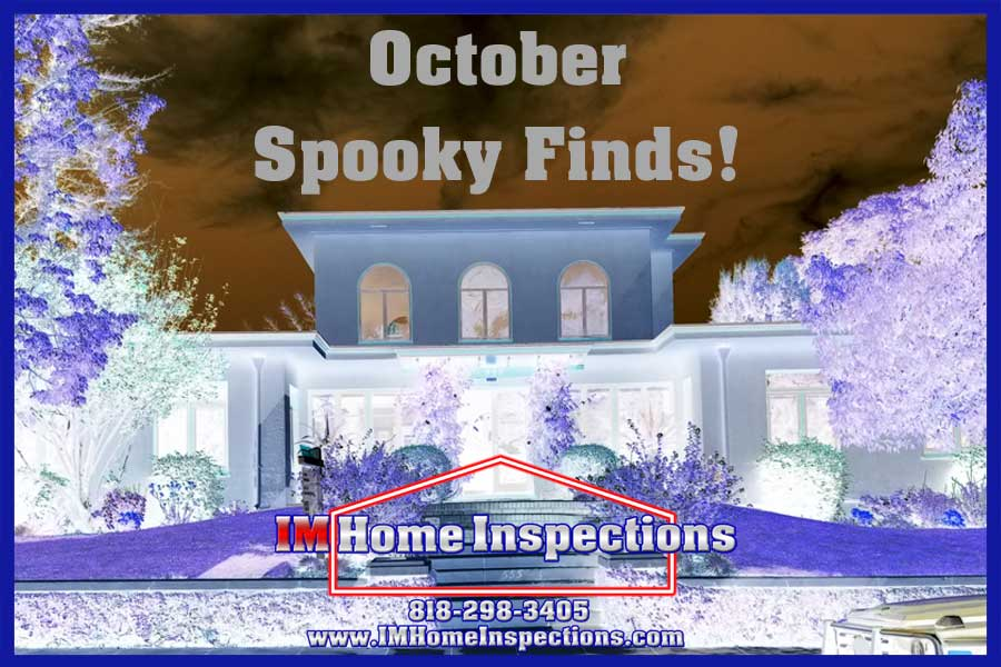 October Spooky Finds