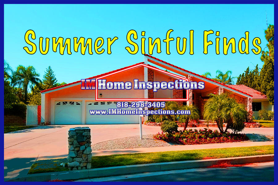 Home Inspector Finds